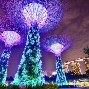 Najlepsze resorty kasynowe w Azji